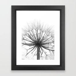 Black and White Dandelion Framed Art Print