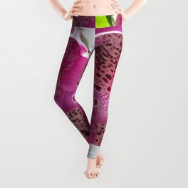 Digitalis named Excelsior Pink Leggings
