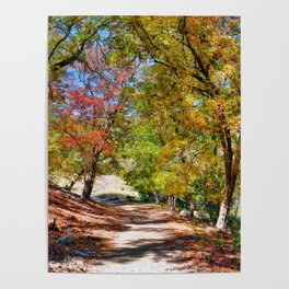 Lost Maples Poster