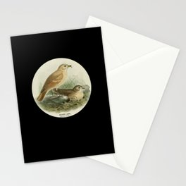 Vintage Bird Lover Retro Birdwatching Lover Gift Stationery Cards