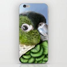 Thorin iPhone & iPod Skin