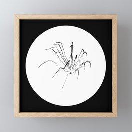 "Fireworks   ""Spider (Skeletal)""   Black (Circle ver.)   [D0949~03_015] Framed Mini Art Print"