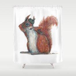 Squirrels' hat Shower Curtain