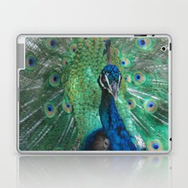 Let Me See Your Peacock Laptop & iPad Skin
