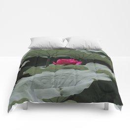 Nature's Pink Comforters