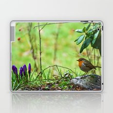 Robin in the spring Laptop & iPad Skin