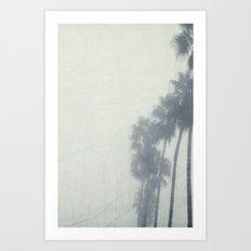 Palm Trees In The Fog  Art Print