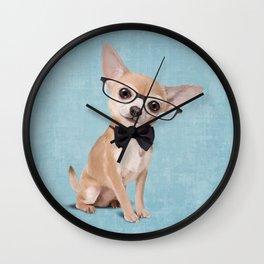 Mr. Chihuahua Wall Clock