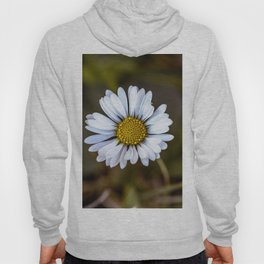 Colourful daisy Hoody