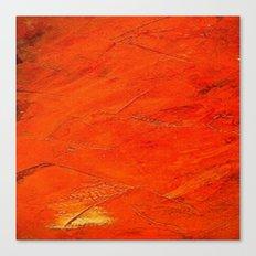 Glazed Terracotta Canvas Print