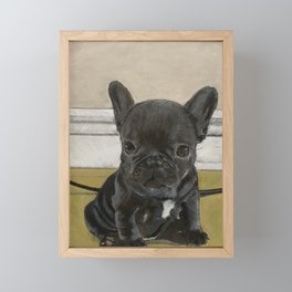 Mylo The French Bulldog Pup Framed Mini Art Print