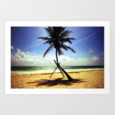Palm on the beach. Art Print