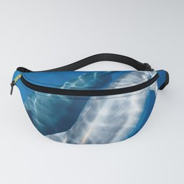 Common Dolphin Fanny Pack