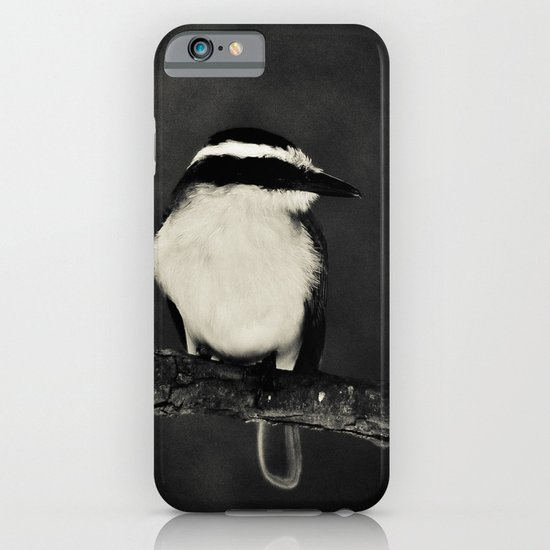 Bird iPhone & iPod Case