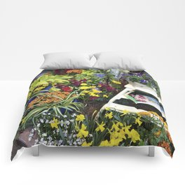 Always good to have a few flowers around the kitchen! Comforters