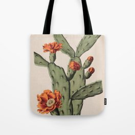 Botanical Cactus Tote Bag