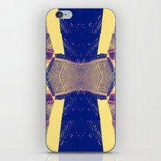 Spiderwebs  iPhone & iPod Skin