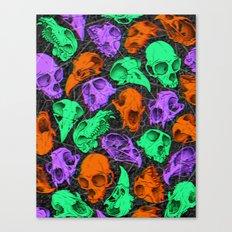 Critter Skulls Canvas Print