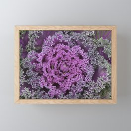 Kale Framed Mini Art Print