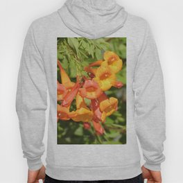 Natural Brass Blowing in the Breeze Hoody