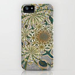 Swirlz iPhone Case