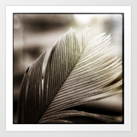 Feather Tip Art Print