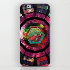 Cosmos MMXIII - 12 iPhone & iPod Skin