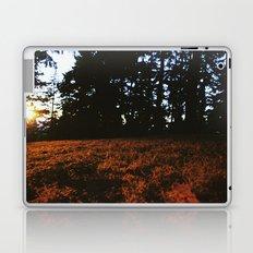 Fall's Last Light Laptop & iPad Skin