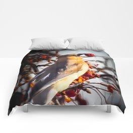 Cedar Waxwing Comforters