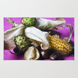 Atumnal Still Life - Chestnut & Maize Rug