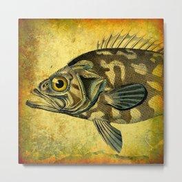 The Fish Metal Print