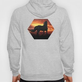 Horse kissed by the wind at sunset Hoody