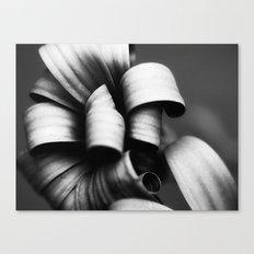 Desaturated Daisies Canvas Print