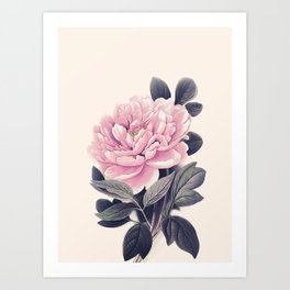 Flower near me 10 Art Print