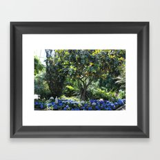 The Lonely Lady Framed Art Print
