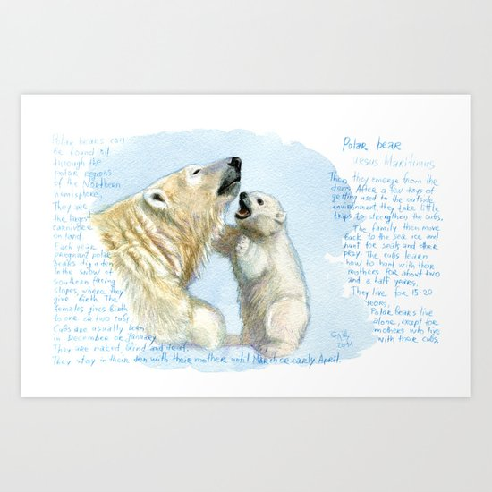 Polar bears A0086 Art Print