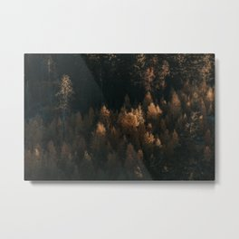 Autumn Fire - Landscape and Nature Photography Metal Print