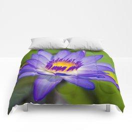 Pūpūkea Garden Breeze Comforters