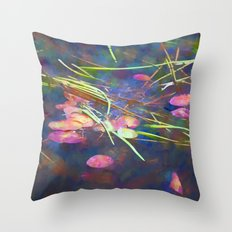 Distant Reflections Throw Pillow