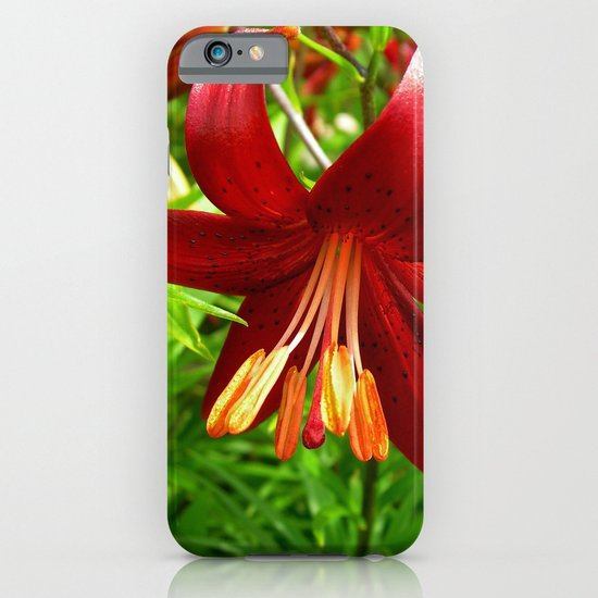 red lily iPhone & iPod Case