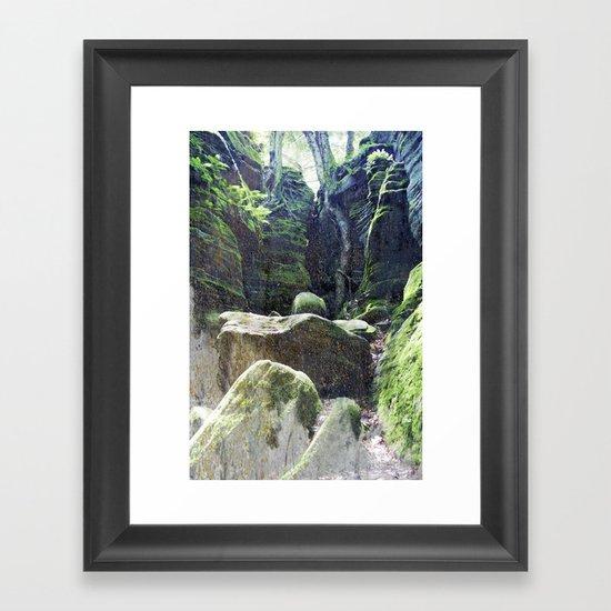 natura 3 Framed Art Print