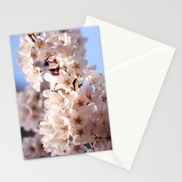 Lush Bloom Stationery Cards