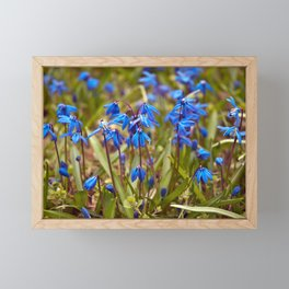 BLUE SOUND of SPRING Framed Mini Art Print