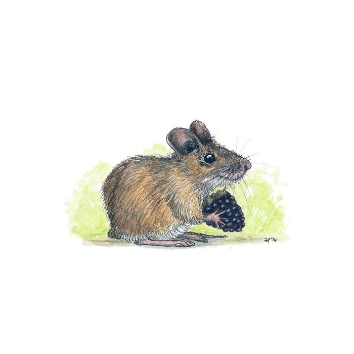 Field Mouse  Duvet Cover