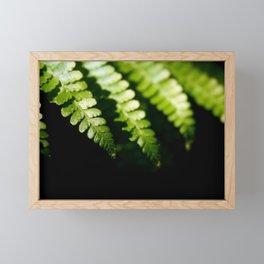 Green Leaves Framed Mini Art Print