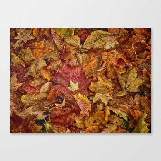 Falls textures Canvas Print