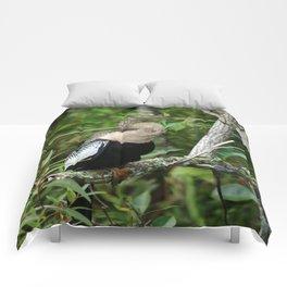 Anhinga Comforters