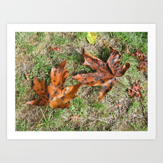 Fall Is Spot On Art Print