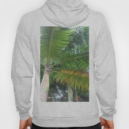 See Life From New Angles Hoody