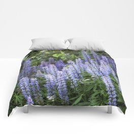 Lupins in Blue and Purple Comforters